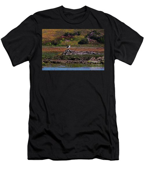 Western Gulls Nesting In A Log Men's T-Shirt (Slim Fit) by Susan Wiedmann