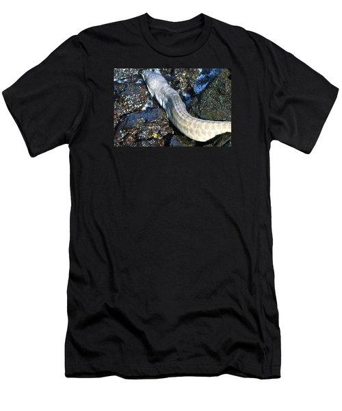 White Moray Eel Men's T-Shirt (Slim Fit) by Lehua Pekelo-Stearns