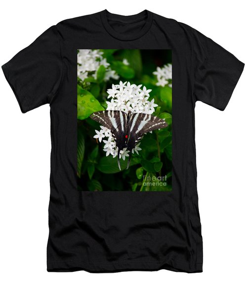 Zebra Swallowtail Men's T-Shirt (Athletic Fit)