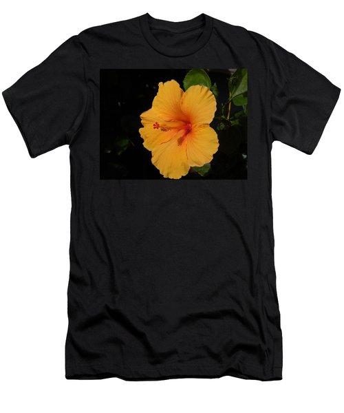 Hibiscus Men's T-Shirt (Slim Fit) by Ron Davidson