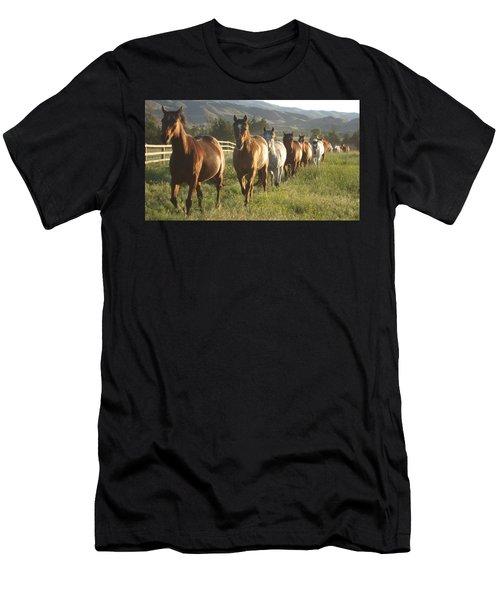 Montana  Big Sky Men's T-Shirt (Athletic Fit)