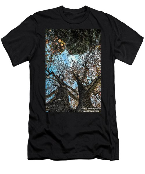 1st Tree Men's T-Shirt (Athletic Fit)