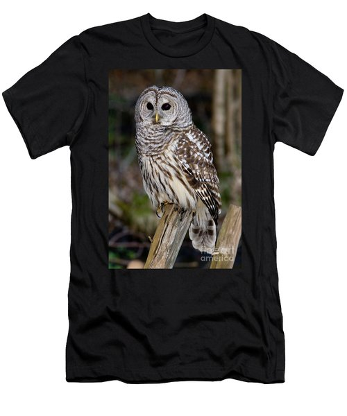 Men's T-Shirt (Slim Fit) featuring the photograph Barred Owl by Les Palenik
