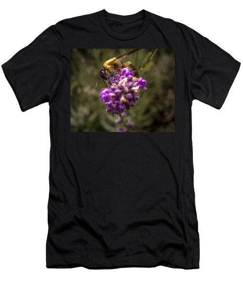 Carpenter Bee On A Lavender Spike Men's T-Shirt (Athletic Fit)