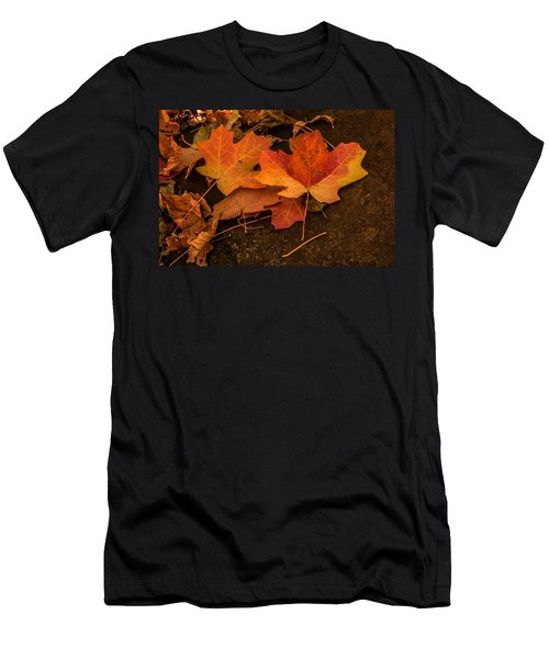 West Fork Fallen Leaves Men's T-Shirt (Athletic Fit)