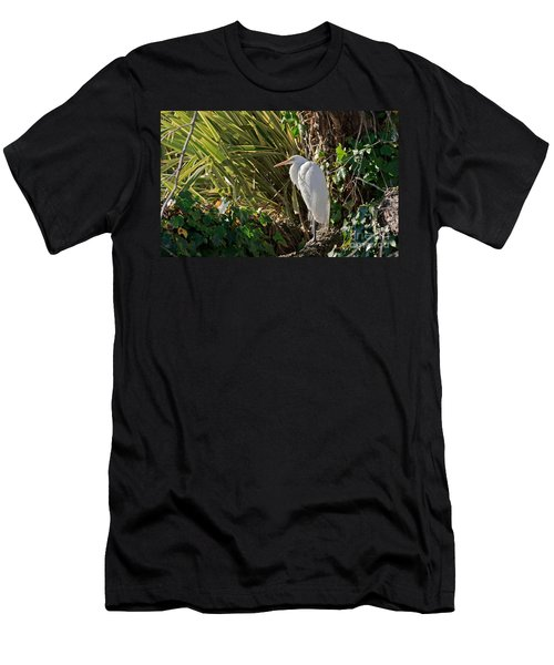 Men's T-Shirt (Slim Fit) featuring the photograph Great Egret by Kate Brown