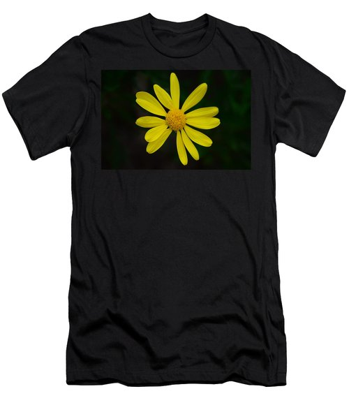 Isolated Daisy Men's T-Shirt (Slim Fit) by Debra Martz