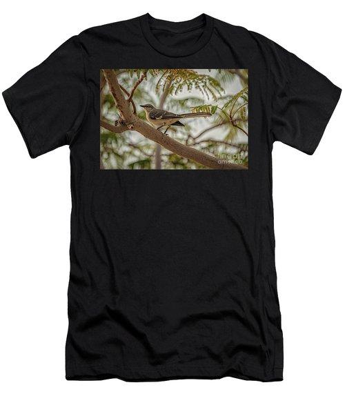 Mockingbird Men's T-Shirt (Slim Fit) by Robert Bales