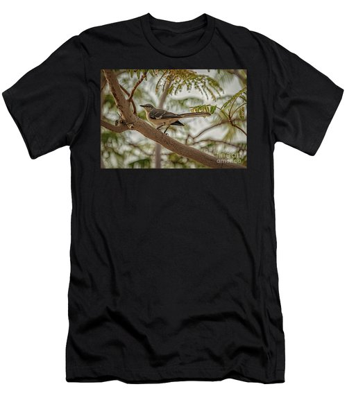 Mockingbird Men's T-Shirt (Athletic Fit)