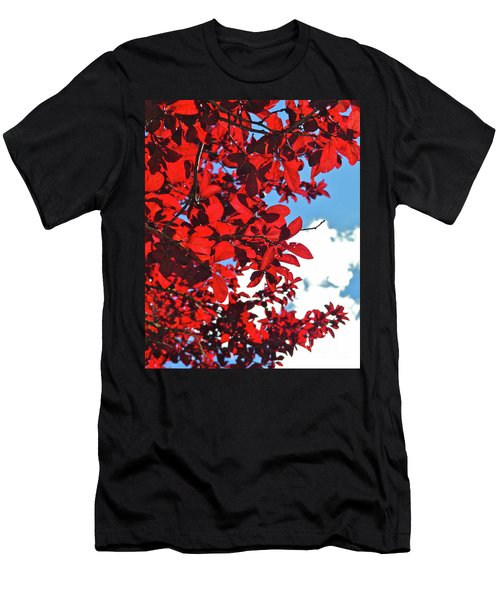 Plum Tree Cloudy Blue Sky 3 Men's T-Shirt (Slim Fit) by CML Brown
