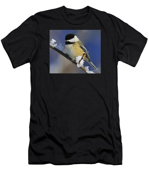 Winter Chickadee... Men's T-Shirt (Athletic Fit)