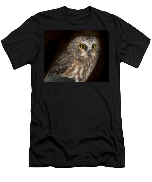 Saw-whet Men's T-Shirt (Athletic Fit)
