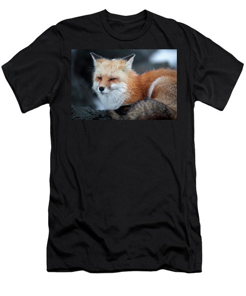 A Red Fox  On The Summit Of Mt Men's T-Shirt (Athletic Fit)