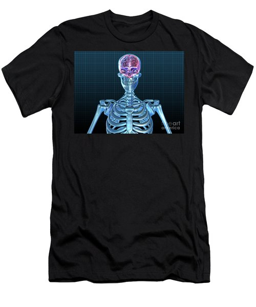 Human Skeleton And Brain, Artwork Men's T-Shirt (Athletic Fit)