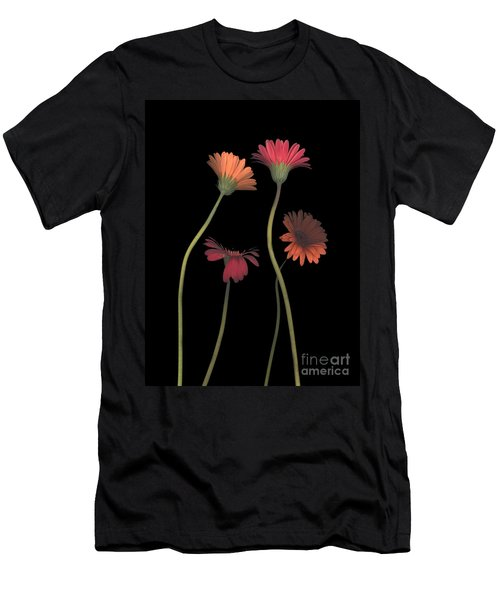 4daisies On Stems Men's T-Shirt (Athletic Fit)