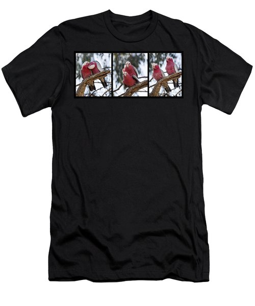 Galahs Men's T-Shirt (Athletic Fit)