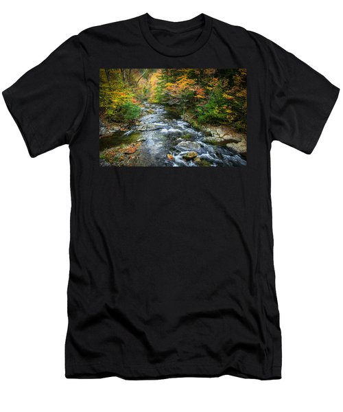 Stream Great Smoky Mountains Painted Men's T-Shirt (Athletic Fit)