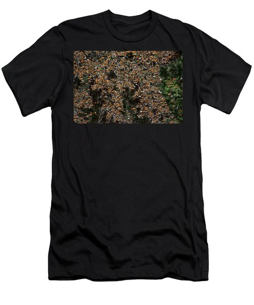 Monarch Butterflies Men's T-Shirt (Slim Fit) by Carol Ailles