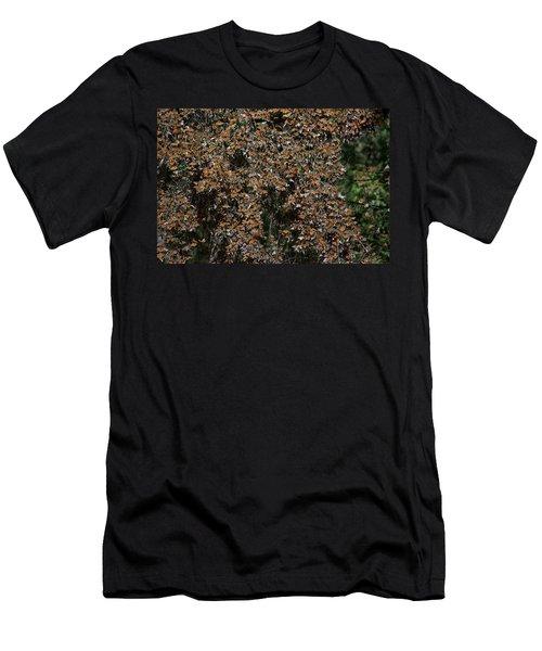Monarch Butterflies Men's T-Shirt (Athletic Fit)