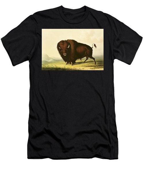 A Bison Men's T-Shirt (Athletic Fit)