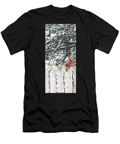 A Christmas Cardinal Men's T-Shirt (Athletic Fit)