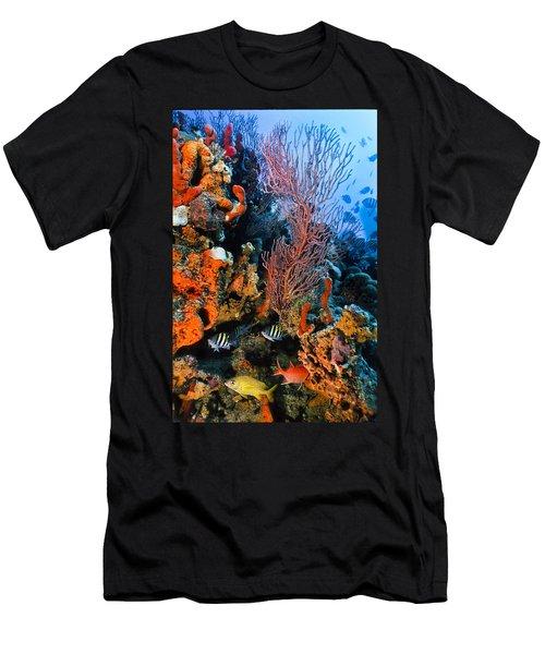 A Colorful Ledge Men's T-Shirt (Athletic Fit)