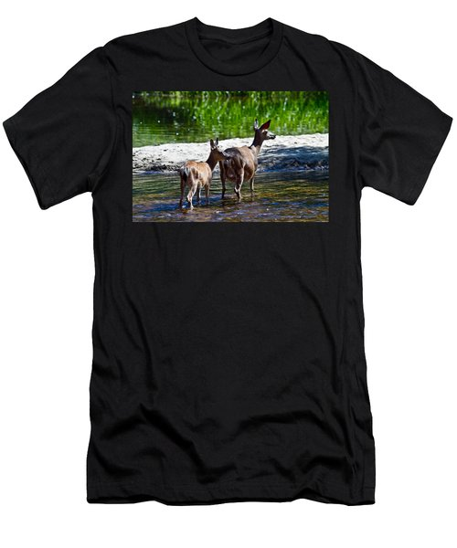 A Doe And Fawn Men's T-Shirt (Slim Fit) by Brian Williamson