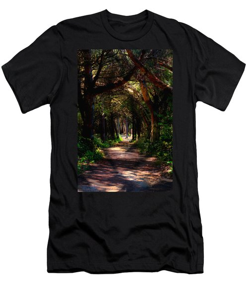 A Forest Path -dungeness Spit - Sequim Washington Men's T-Shirt (Athletic Fit)
