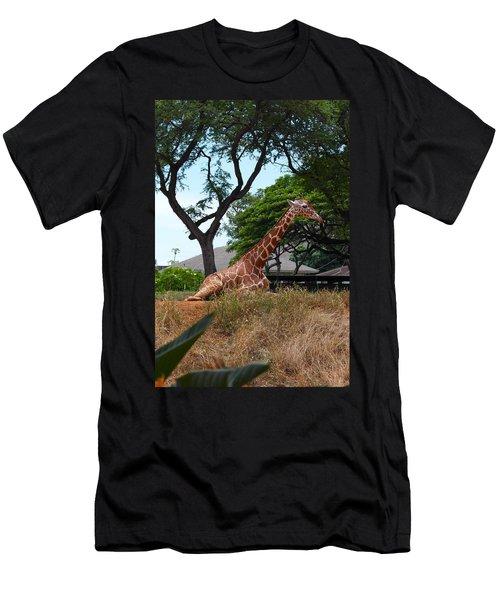 A Giraffe Rests In Honolulu Men's T-Shirt (Athletic Fit)