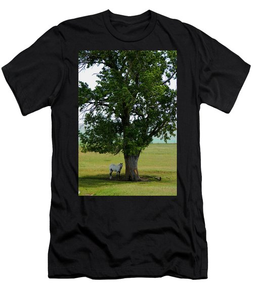 A One Horse Tree And Its Horse					 Men's T-Shirt (Athletic Fit)
