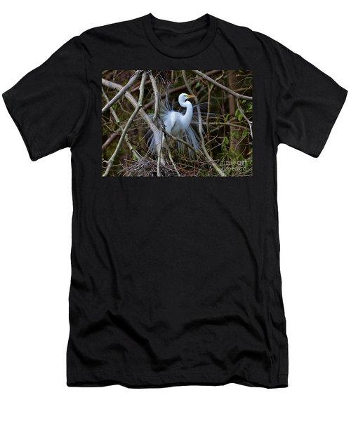 A Season Of Love Men's T-Shirt (Athletic Fit)