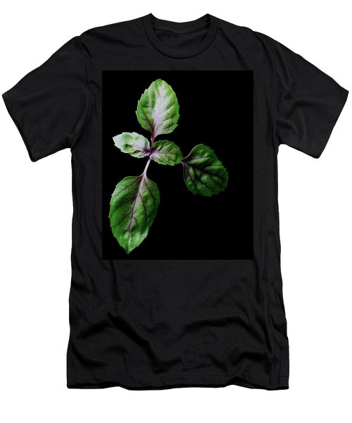 A Sprig Of Basil Men's T-Shirt (Athletic Fit)