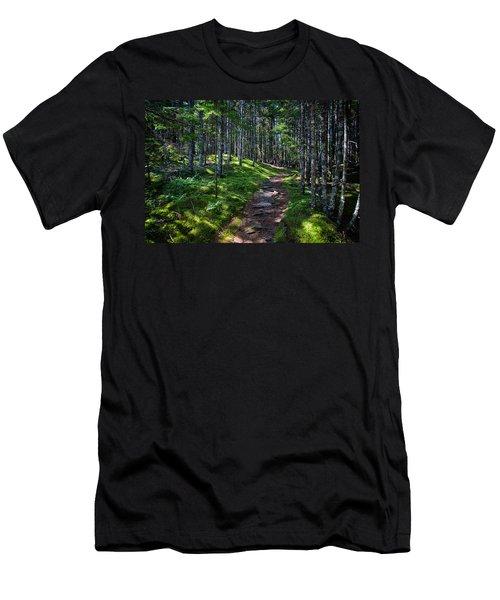 A Walk In The Woods Men's T-Shirt (Slim Fit) by John Haldane