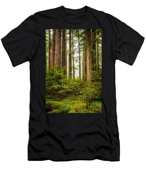A Walk Inthe Forest Men's T-Shirt (Slim Fit) by Ken Stanback