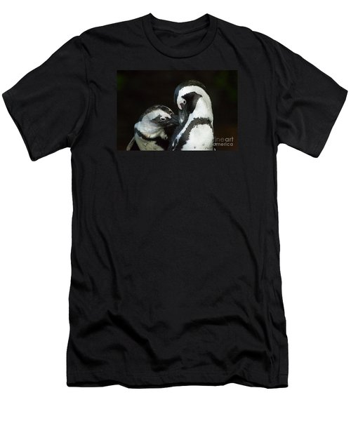 African Black-footed Penquin-signed-#8081 Men's T-Shirt (Athletic Fit)