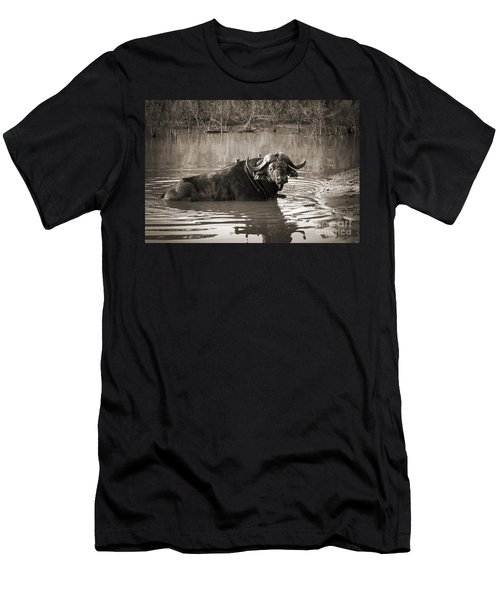 African Buffalo Men's T-Shirt (Athletic Fit)