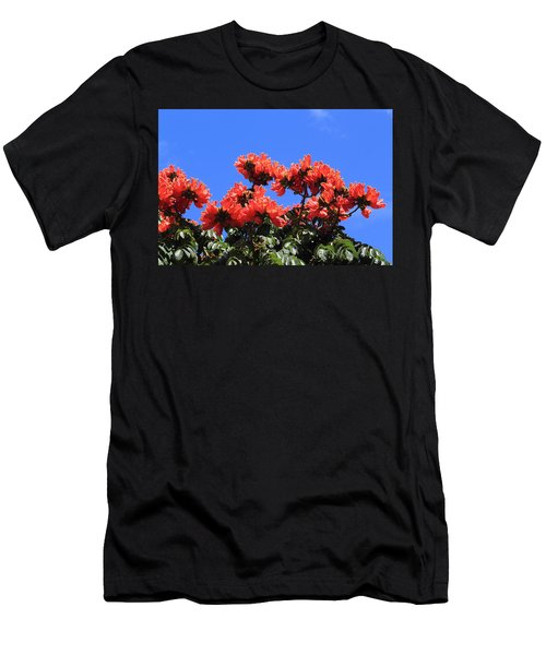 African Tulip Tree Men's T-Shirt (Athletic Fit)