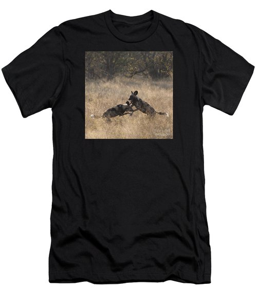African Wild Dogs Play-fighting Men's T-Shirt (Athletic Fit)