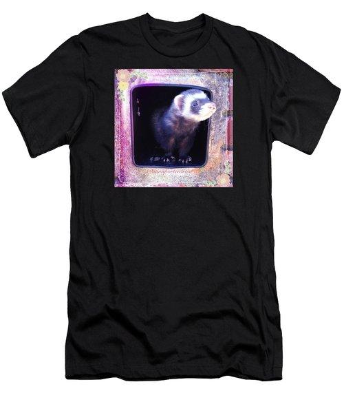 Airmail Ferret Men's T-Shirt (Slim Fit) by Anna Porter