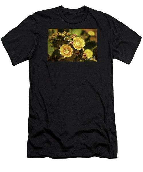 'albispina' Cactus #3 Men's T-Shirt (Athletic Fit)