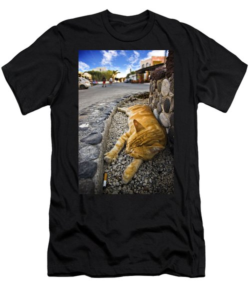 Men's T-Shirt (Slim Fit) featuring the photograph Alley Cat Siesta by Meirion Matthias