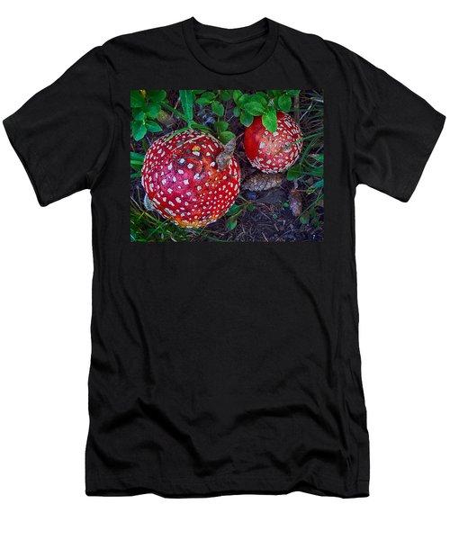 Amanita Men's T-Shirt (Athletic Fit)