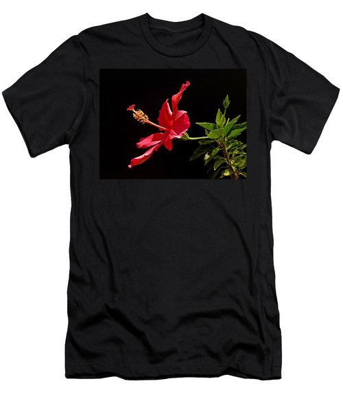Amapola Men's T-Shirt (Athletic Fit)