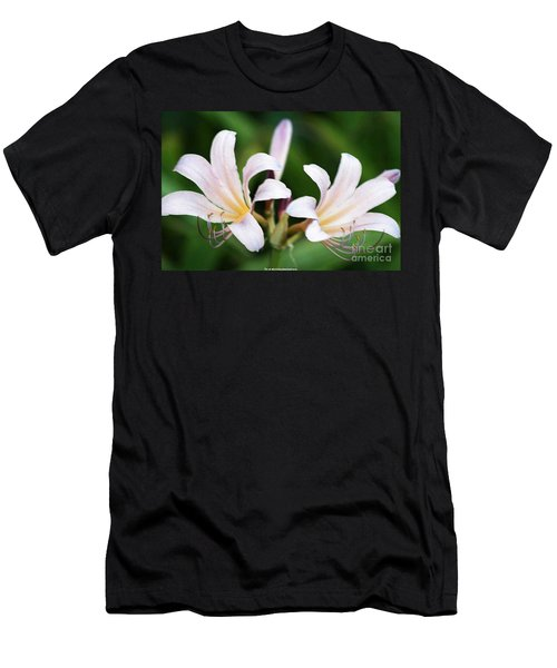 Amaryllis Belladonna Naked Ladies Men's T-Shirt (Slim Fit)