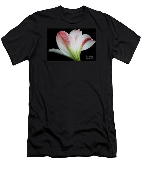 Amaryllis Men's T-Shirt (Slim Fit) by Judy Whitton