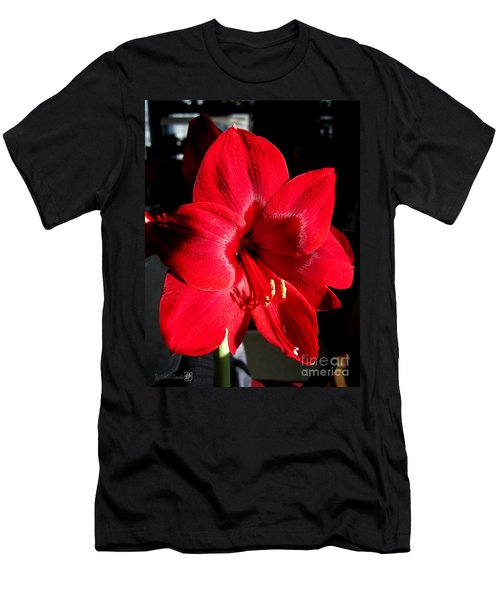 Men's T-Shirt (Slim Fit) featuring the photograph Amaryllis Named Black Pearl by J McCombie