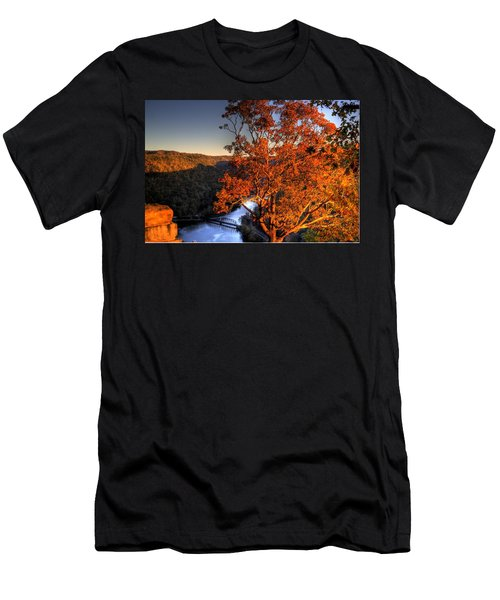 Amazing Tree At Overlook Men's T-Shirt (Athletic Fit)
