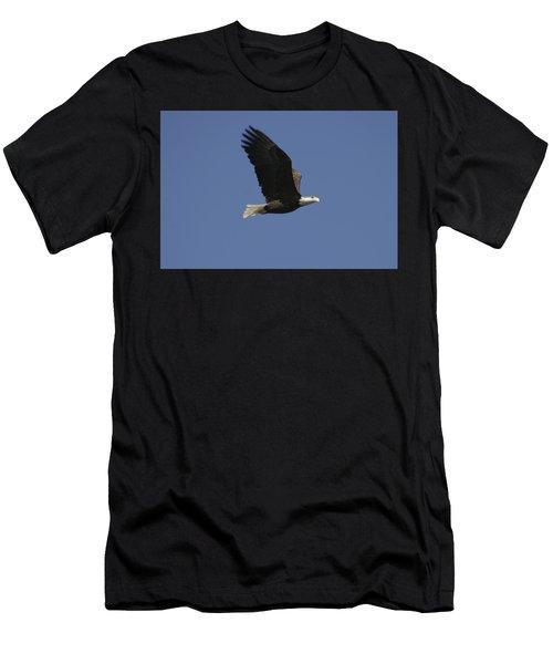 American Bald Eagle Men's T-Shirt (Athletic Fit)