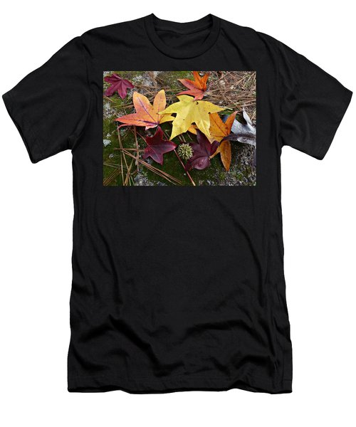Autumn Men's T-Shirt (Slim Fit) by William Tanneberger