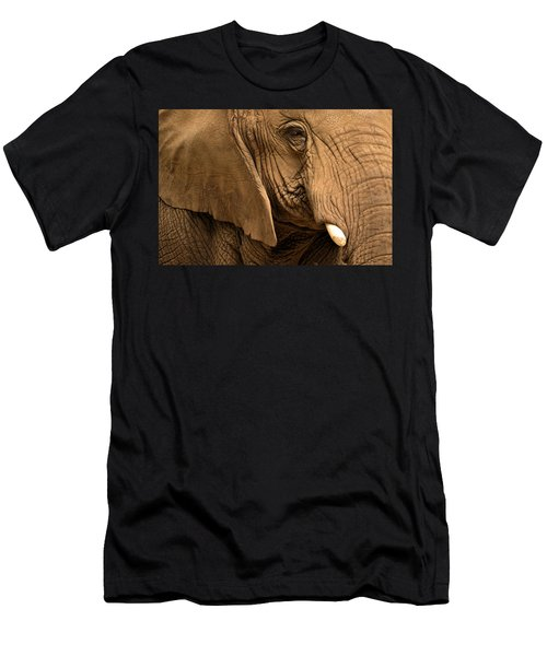 An Elephant's Eye Men's T-Shirt (Athletic Fit)